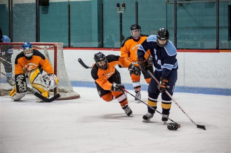 """视障运动员怎么玩冰球?3D打印可""""听音辨向""""的球"""