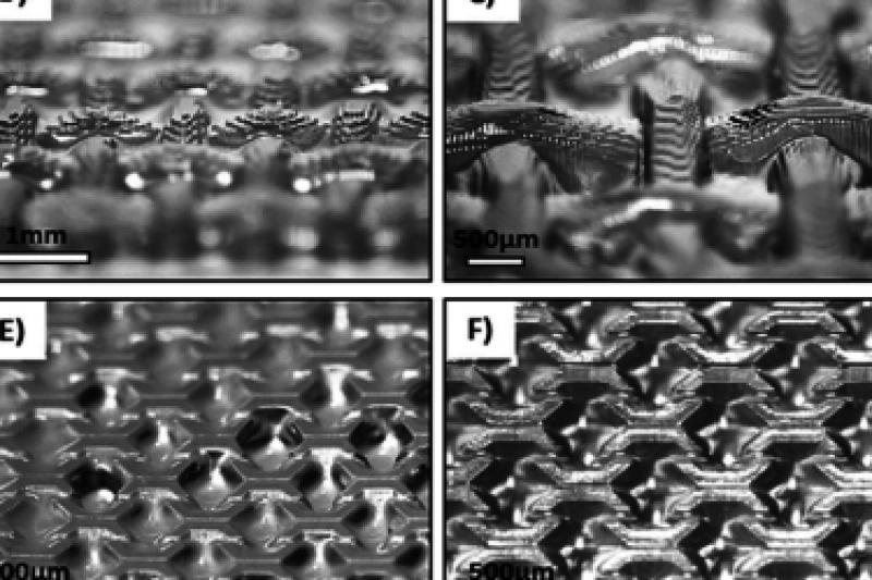 新西兰研究团队研发用于合成组织的DLP 3D打印生物树脂