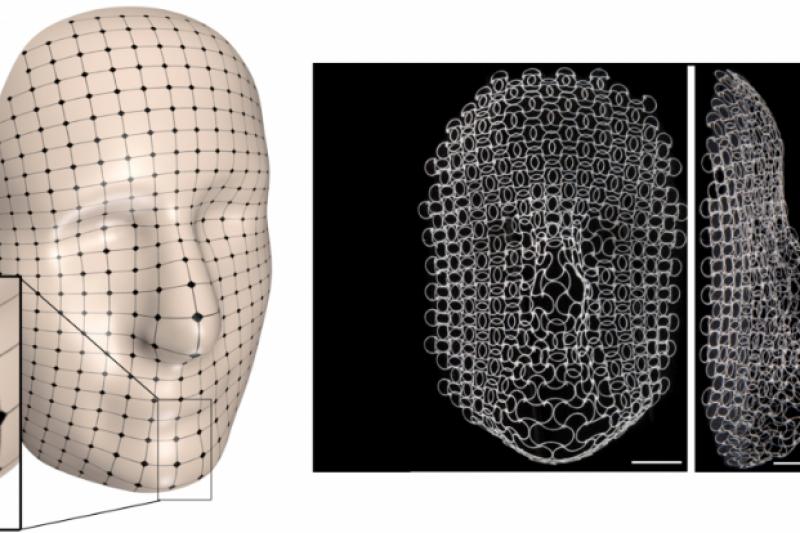 先睹为快:揭开可变形4D打印材料的神秘面纱